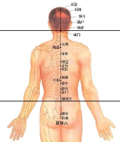 打通督脉和膀胱经,简单方法让你受益终生,请认真读完